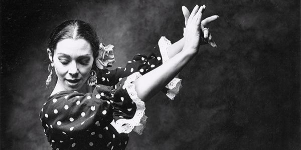 flamenko-kapak1-2